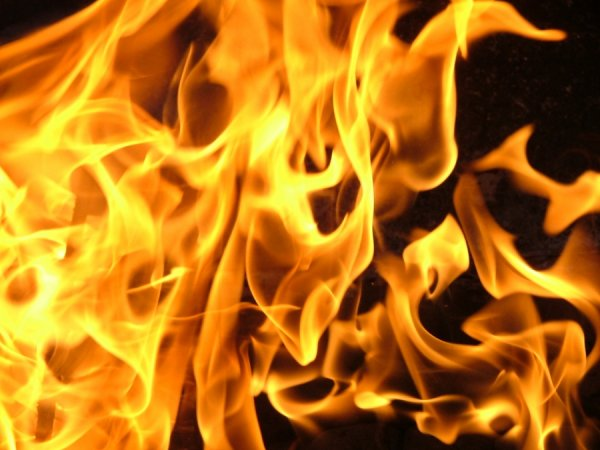 В Свердловской области при пожаре в жилом доме погибли пять человек