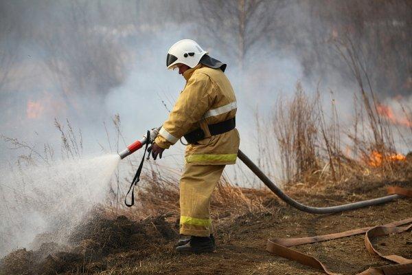 Дым от лесных пожаров в Китае и Приморье окутал Владивосток
