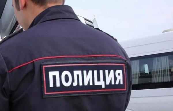 Московская полиция начала проверку после опубликованного видео жестокого избиения кота