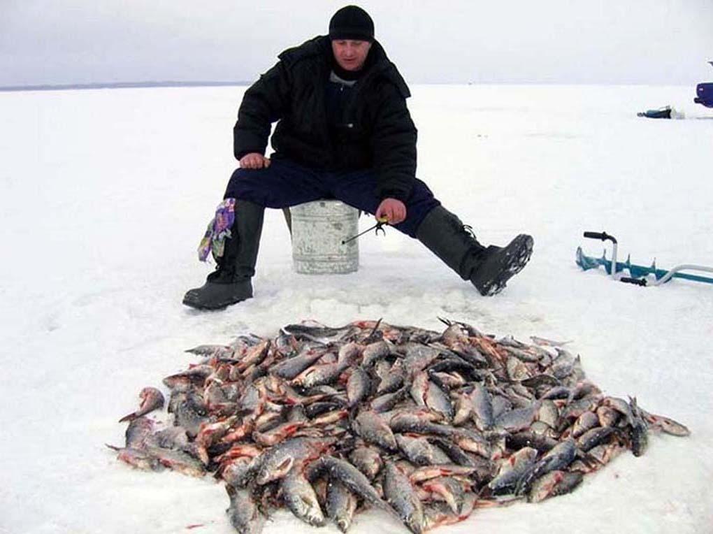 Лучший прикорм для зимней рыбалки