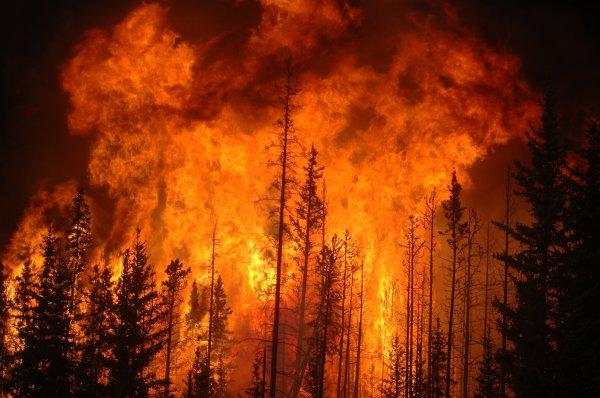В колонии Самары произошел пожар