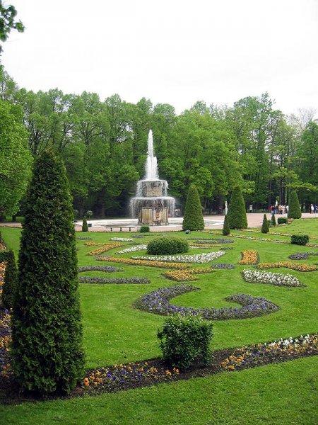 В парке Петергофа обнаружили тело мужчины