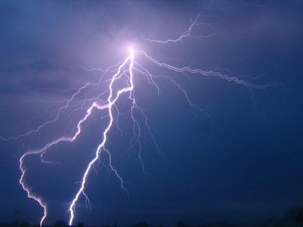 На севере Киргизии в результате удара молнии погибли подросток, лошадь и собака