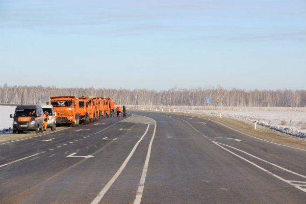 В Омске на трассе М-51 водитель сбил путану и наставил её на путь истиный