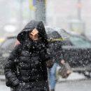 Провода оборваны в пяти районах Владимирской области из-за снега