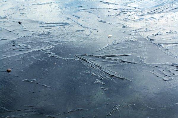 Подросток утонул в реке, спасая провалившуюся под лед любимую собаку