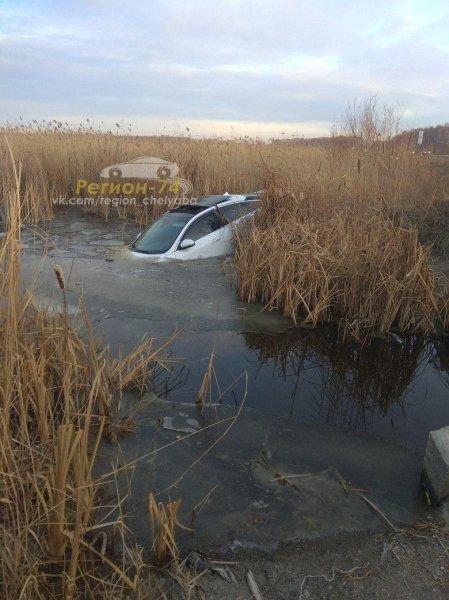 В Челябинской области «Ягуар» утонул из-за врезавшейся в него дикой совы