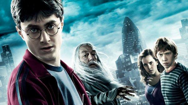 Юная жительница Петербурга упала в мусоропровод, играя в Гарри Поттера