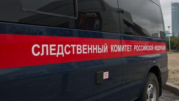 В лесу в Челябинской области обнаружили мертвого ребенка