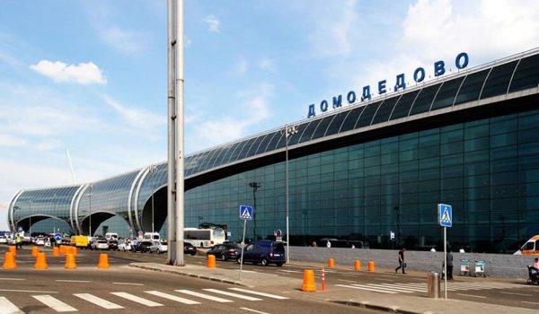 В аэропорту «Домодедово» задержали мастурбирующего при людях мужчину