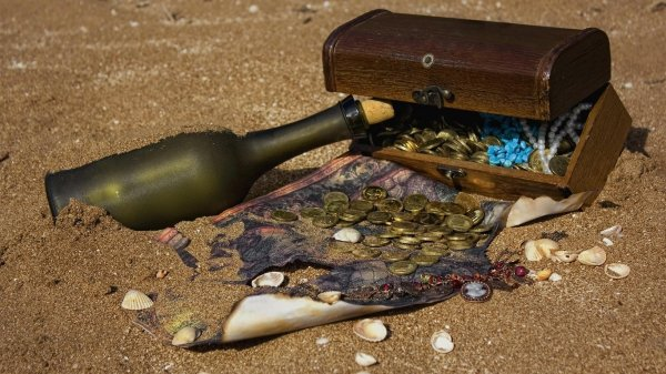Из дома чиновника на Рублевке украли бутылку пиратского рома