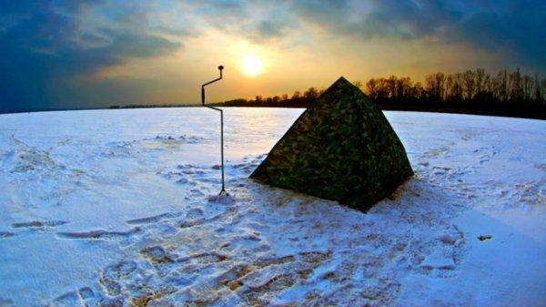 В палатке под Барнаулом найдены два трупа и девушка в коматозном состоянии