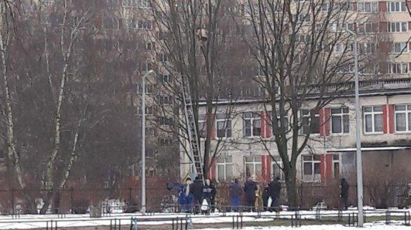 В Петербурге голый мужчина залез на дерево
