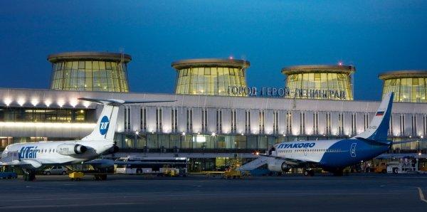 В Пулково перенесли рейс из-за львенка на борту