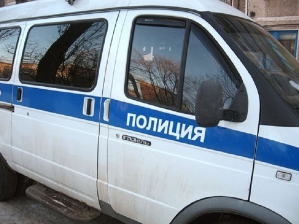В Москве полицейская машина столкнулась с собачьей упряжкой пенсионерки