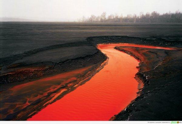 В Тюмени река окрасилась в кровавый цвет