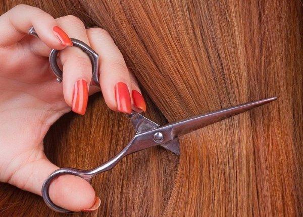 В Волгодонске уволилась преподавательница, отрезавшая ученице волосы