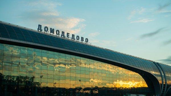 В СК допросили диспетчера, курировавшего отправку Ан-148 с Домодедово