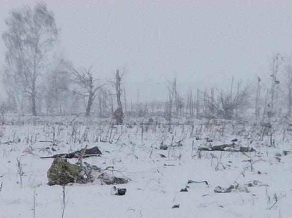 В зоне крушения Ан-148 дежурят 11 нарядов Росгвардии Подмосковья