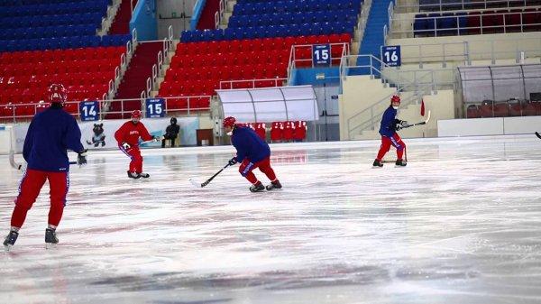 11-летний мальчик погиб во время хоккейной тренировки в Липецкой области