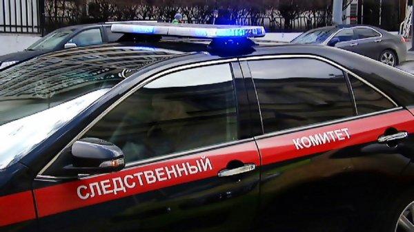СКР проверяет обрушение грунта в Политехническом музее Москвы