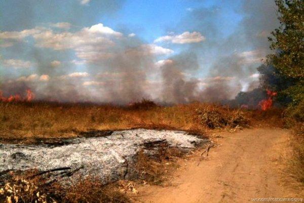 В Ростове-на-Дону горит Ботанический сад