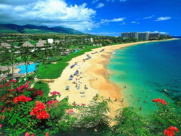 Пришельцы дали знак землянам, когда началось землетрясение на Гавайах