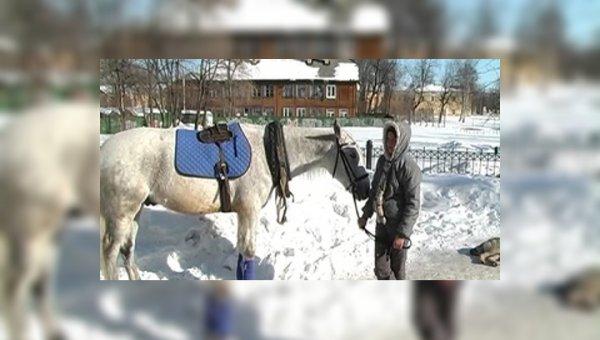В центре Уфы лошадь с людьми врезалась в планетарий