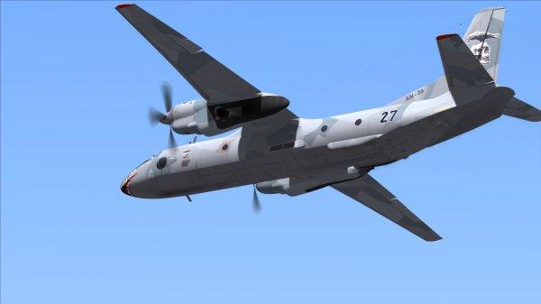 СМИ: Причиной крушения Ан-26 в Сирии могла быть ошибка пилотирования