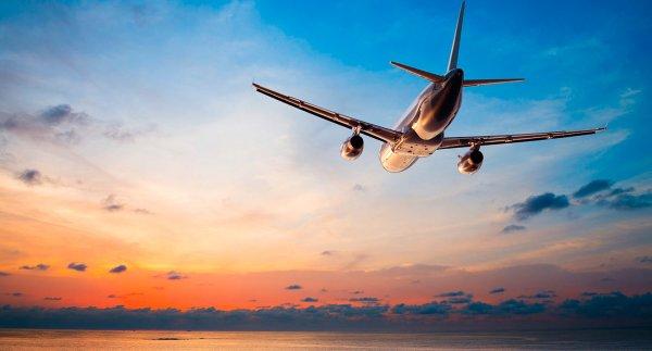 Попытка пассажирки из США выйти из самолета со словами: «Я бог!» попала на видео