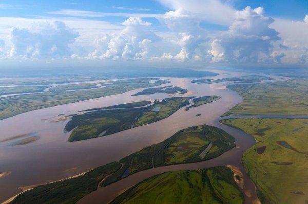 В реке Амур нашли десятки человеческих кистей