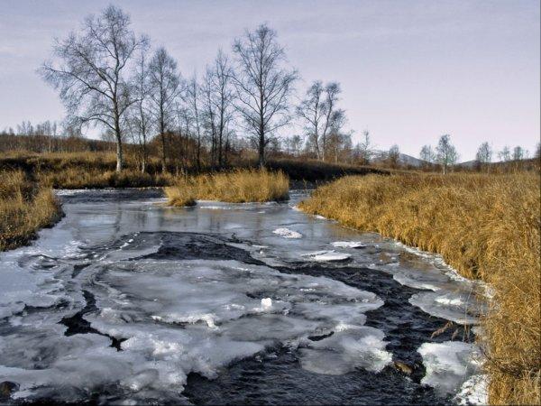 В Томской области подростки спасли ребенка, провалившегося под лед