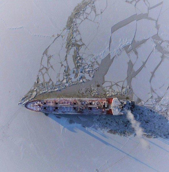 В Финском заливе направлена помощь к терпящему бедствие сухогрузу