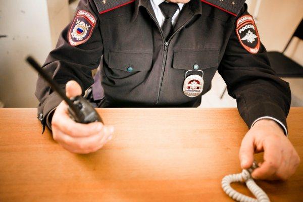 В Новочеркасске собаки нашли останки женщины, пропавшей без вести