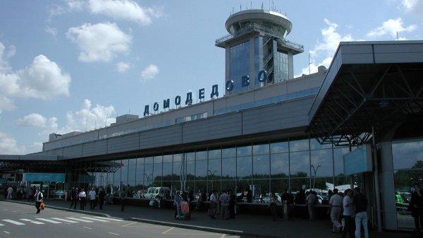 Охранник ТЦ похитил в Домодедово резиновый член