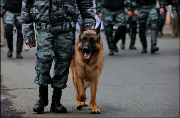Полиция: Угрозы взрыва в ТЦ «Охотный ряд» не обнаружено
