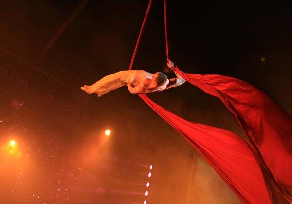 Акробат цирка Антон Мартынов, сорвавшийся с высоты во время выступления, скончался