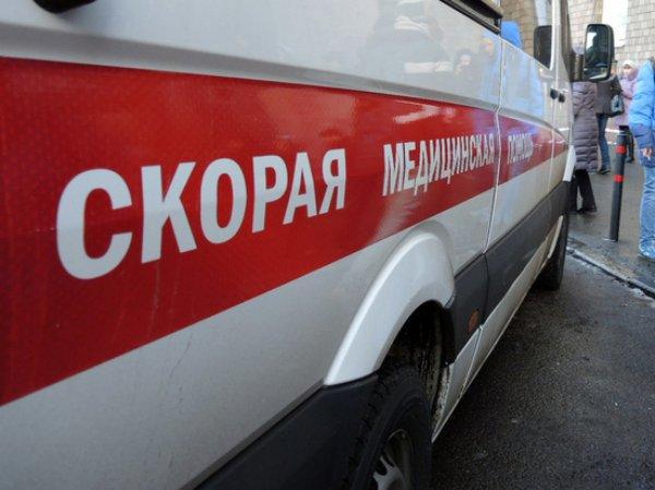 В «новой Москве» поезд насмерть сбил человека