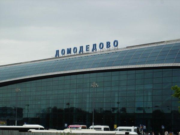 С ВПП в «Домодедово» убрали задымленный самолет