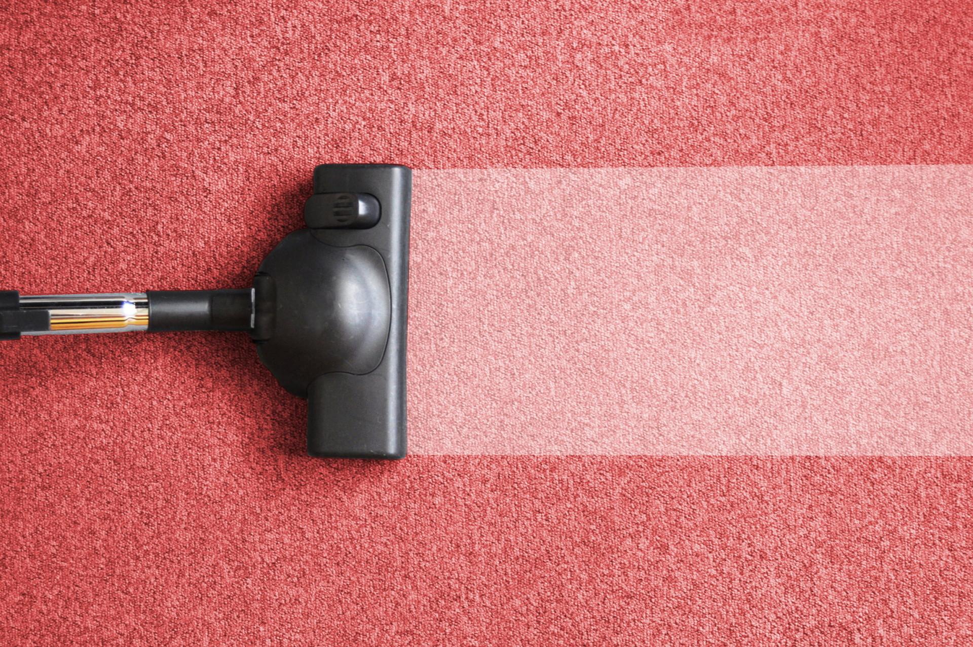 Химчистка ковров на профессиональном оборудовании
