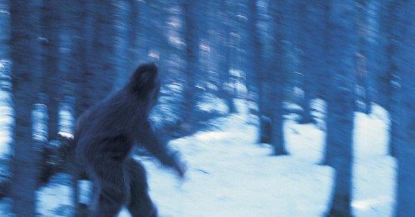 В Татарстане случайно нашли снежного человека