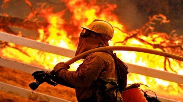 В Ленобласти горит склад деревообрабатывающего завода