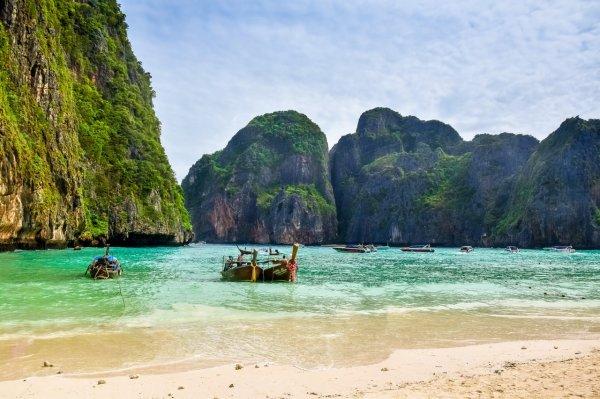 Турист на пляже в Таиланде нашёл «личинку Чужого»