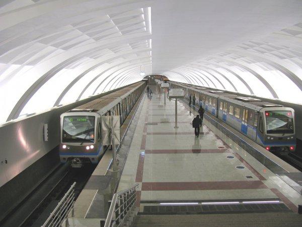 В московской подземке молодой человек умер под колесами поезда
