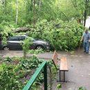 В Подмосковье электричество 9 населенных пунктов восстановят к концу дня