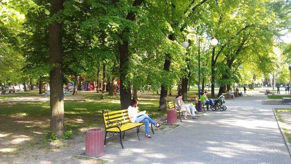 Советник Порошенко прокатился по парку на внедорожнике