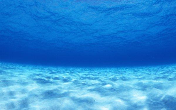 В реке Рязани утонул восьмилетний мальчик