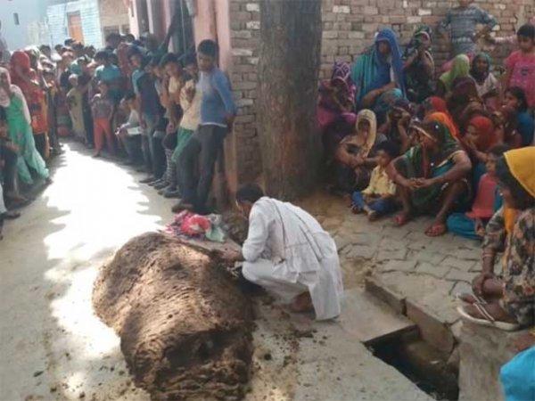 В Индии женщина умерла из-за лечения навозом