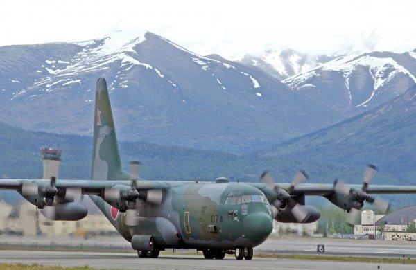 В Сети опубликовали видео падения военного самолета C-130 Hercules в США