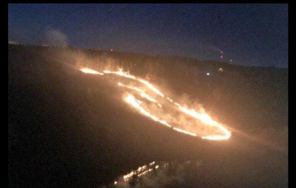 В Новосибирске пламя от горящей травы видно за несколько километров